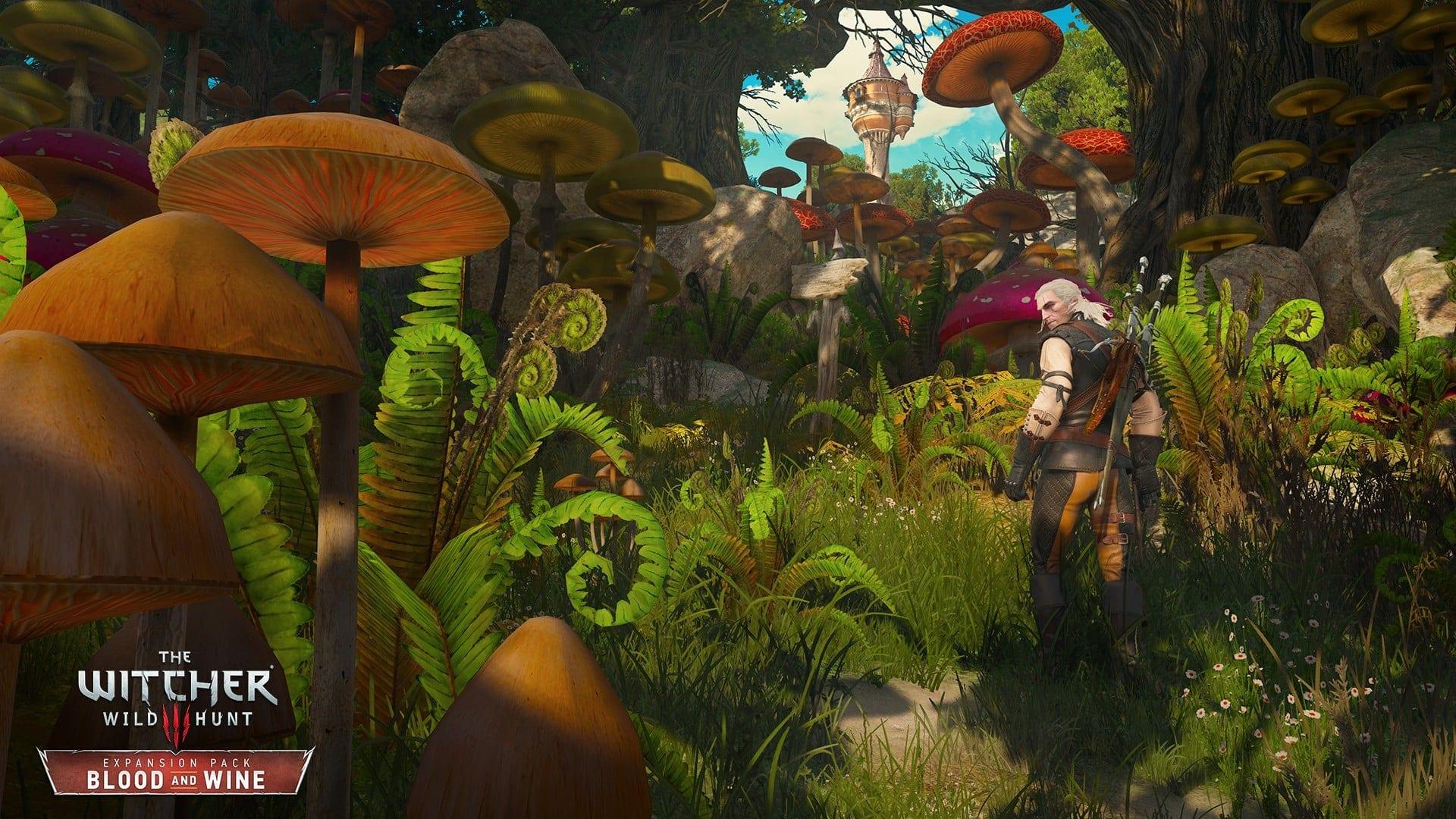 The Witcher 3: Wild Hunt, nuove immagini dell'espansione Blood and Wine 3