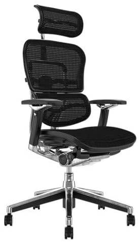 Procomfort Ergohuman Plus Luxury sedia lussuosa